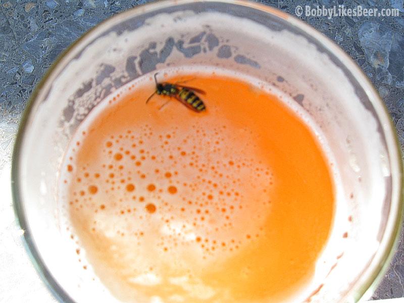 Pszczoły pracują na piwo